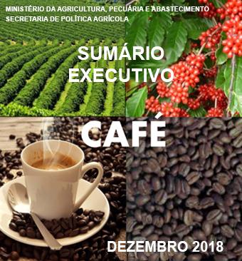 sumario_executivo_dezembro_2018