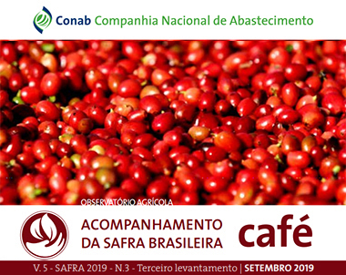 Café arábica corresponde a 70% e café conilon a 30% da produção dos Cafés do Brasil em 2019