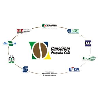 Consórcio Pesquisa Café executa iniciativas em atendimento às demandas do setor cafeeiro